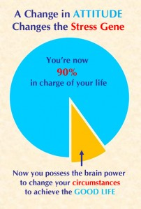 NEW Change in Happiness Pie in color copy