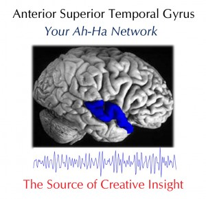 the anterior superior temporal gyrus Ah-Hah copy